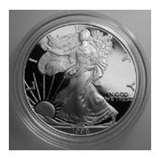 American Eagle Silver Dollar 1998 photos