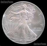 American Eagle Silver Dollar Uncirculated 2010 photos