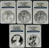 pictures of 25th Anniversary Silver Eagle 5 Coin Set