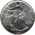 pictures of American Eagle Silver Dollar Value 1992