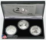 pictures of American Eagle 20th Anniversary Silver Coin Set
