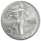 pictures of 2005 American Eagle Silver Dollar Worth