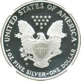 images of 1995-w Silver Proof American Eagle