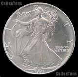 photos of Silver Eagle Coin 1991