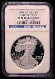 photos of 2008 Eagle Silver Dollar Proof