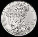 Silver Eagle Coin Shop pictures