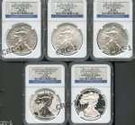 pictures of Eagle Silver Dollar Brown Label Blue Label