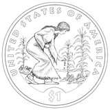 pictures of 2009 Native American Dollar Coin