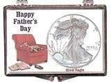 images of Silver Eagle Coin Display Books