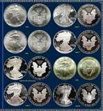 pictures of One Pound Silver Eagle Coin 1996
