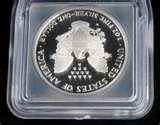 pictures of 1995 W Silver Eagle Coin For Sale